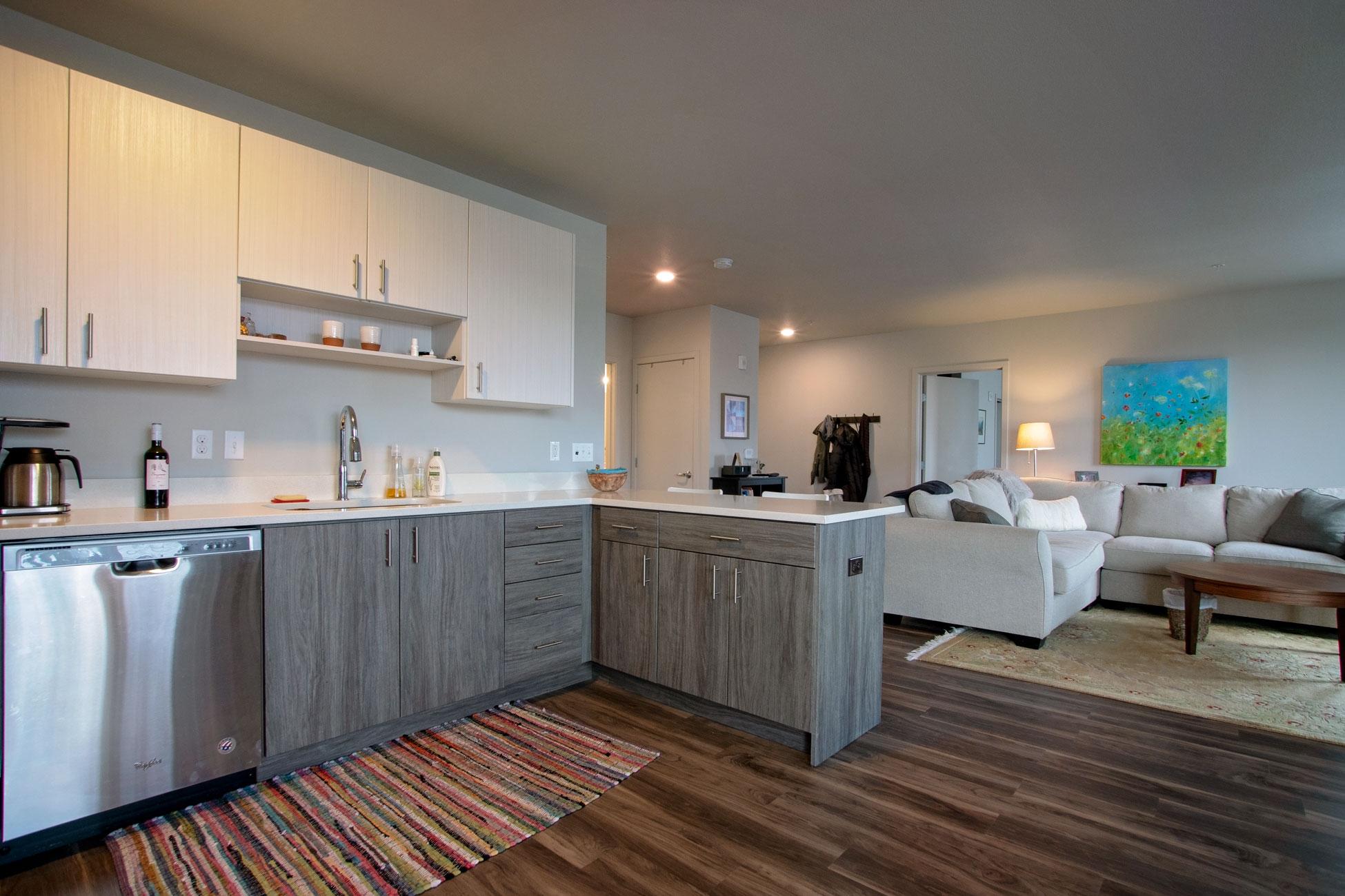kitchen penthouse 3
